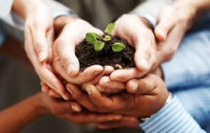 ecosystem-for-entrepreneurs